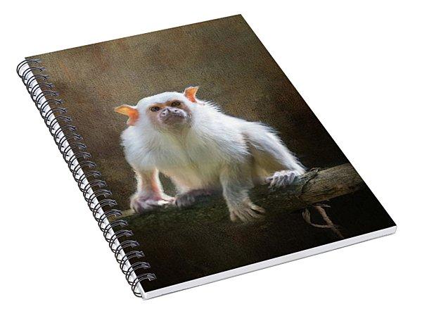 Silvery Marmoset Spiral Notebook