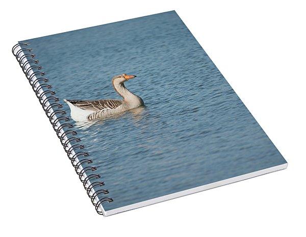 Single Swimmer Spiral Notebook