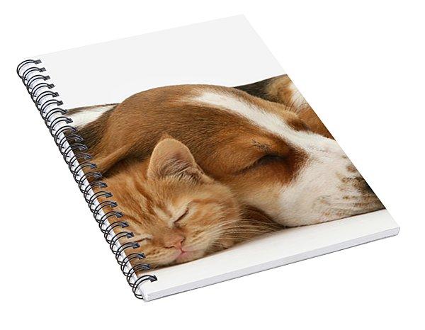 Sleepy Ginger Pals Spiral Notebook