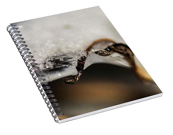 Snow Cryrstals Spiral Notebook