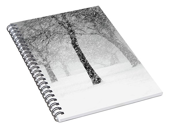Snow Storm At Starved Rock Spiral Notebook