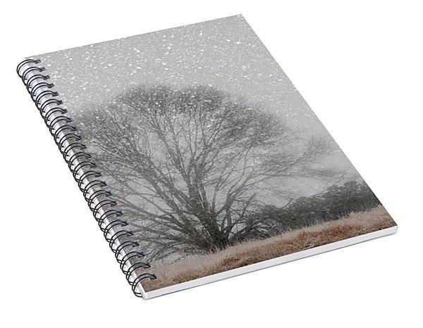 Snow Storm Tree Spiral Notebook