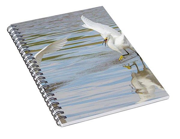 Snowy Egret Chase 1382-111317-2cr Spiral Notebook