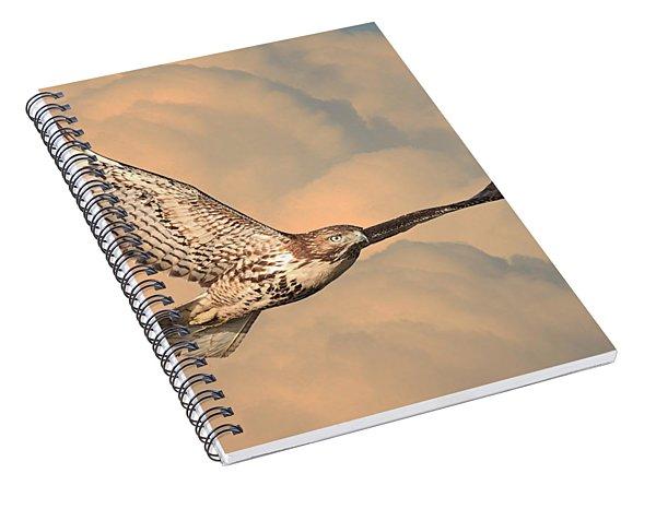 Soaring Hawk Spiral Notebook