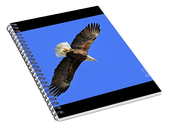 Soaring Into The Blue  Spiral Notebook