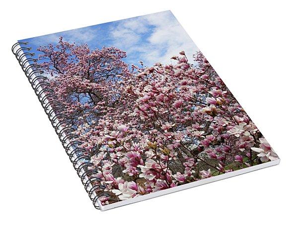 Soaring Magnolia Spiral Notebook