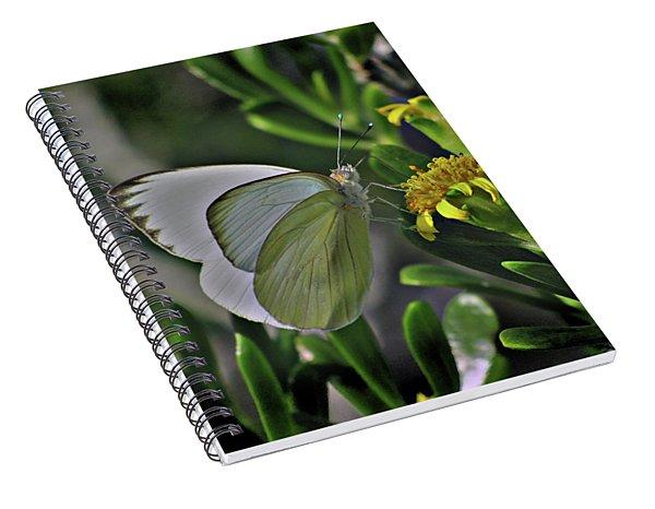 Soft As A Leaf Spiral Notebook