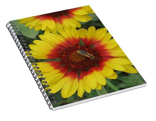 Soldier On Fire Spiral Notebook