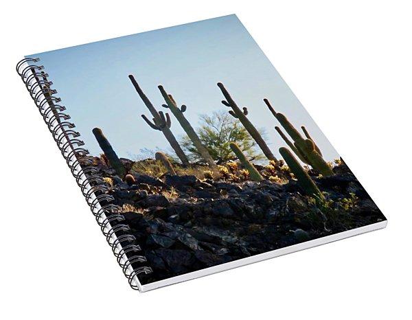Sonoran Desert Saguaro Slope Spiral Notebook