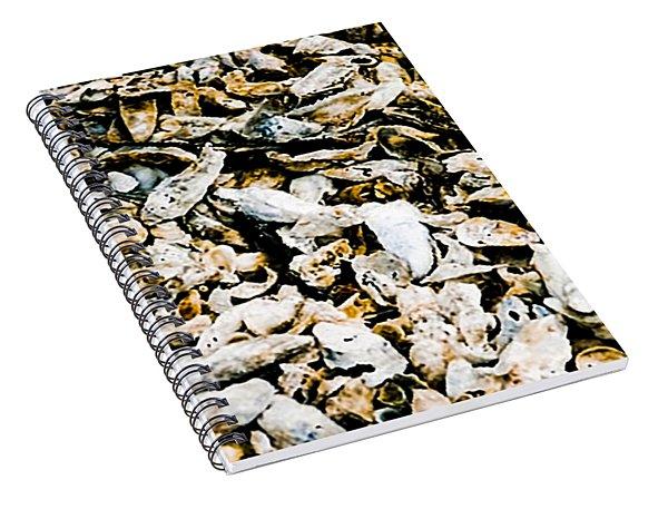 Southern Shells Spiral Notebook