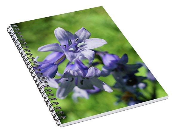 Spanish Bluebell Spiral Notebook
