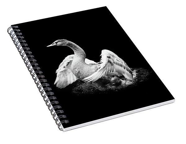 Spreading Spiral Notebook