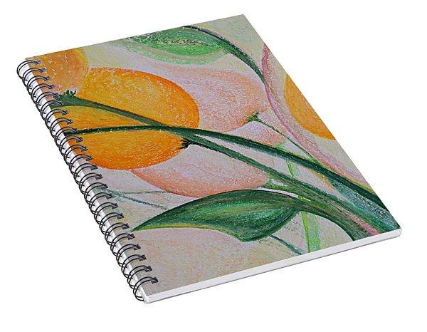 Spring Light Spiral Notebook