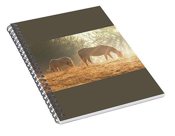 Spring Morning In The Ozarks Spiral Notebook