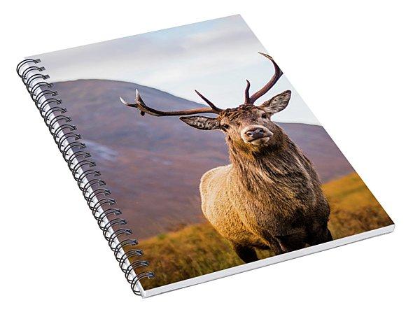 Stag  Spiral Notebook