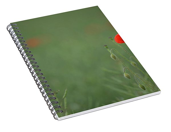 Standing Out In A Sea Of Green Spiral Notebook
