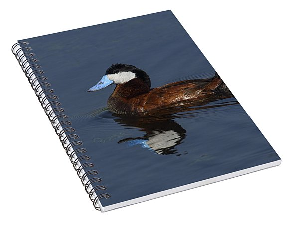 Stiff Tail Spiral Notebook