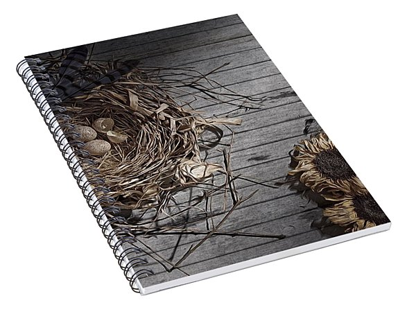 Still Life With Flowers, Eggs, And Nest Spiral Notebook