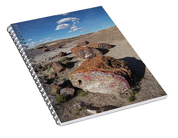 Stone Log Smoke Signals Spiral Notebook