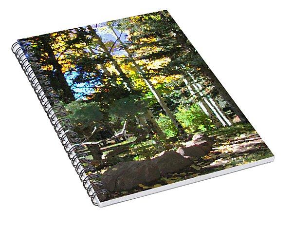 Stone Park Trails Spiral Notebook