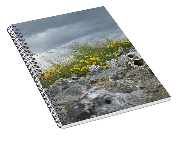 Striking Ruins Spiral Notebook