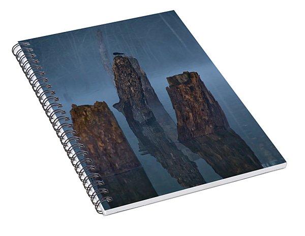 Stumped Spiral Notebook