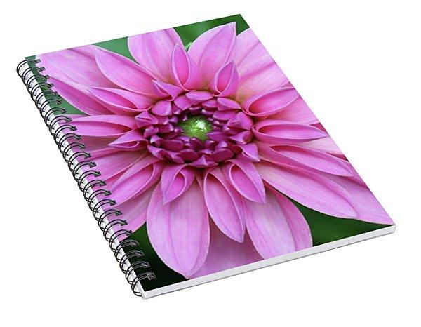 Stunning Beauty Spiral Notebook