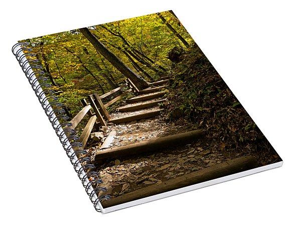 Sunlit Trail Spiral Notebook
