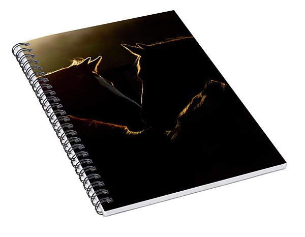 Sunrise Companions Spiral Notebook