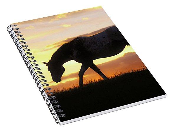 Sunset Appy Spiral Notebook