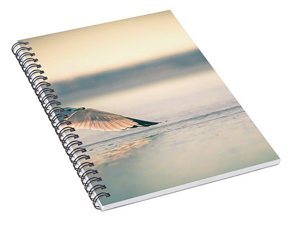 Sunset Seagull Takeoffs Spiral Notebook