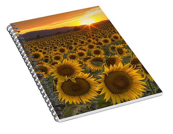 Sunshine And Happiness Spiral Notebook