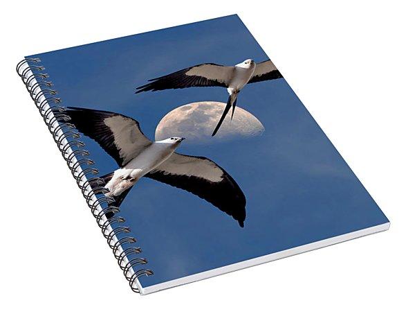 Swallow Tail Kites In Flight Under Moon Spiral Notebook