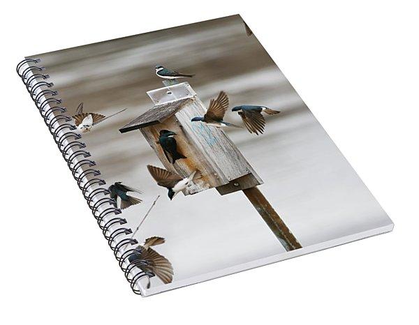 Swallows Spiral Notebook