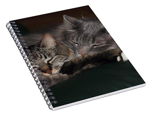 Sweet Dreams Spiral Notebook
