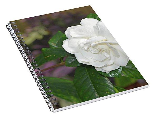 Sweet Gardenia Spiral Notebook