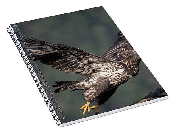Take Off Spiral Notebook