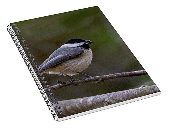Take Out Spiral Notebook