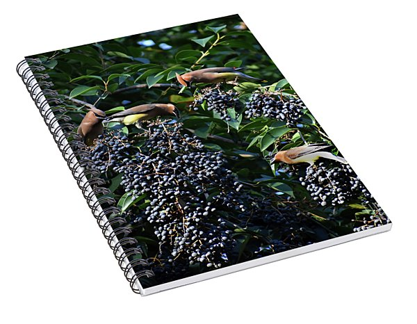 The Berry Bar Spiral Notebook