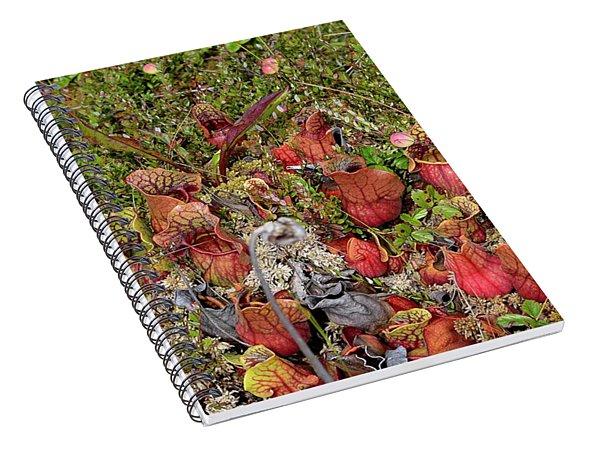 The Bog Spiral Notebook