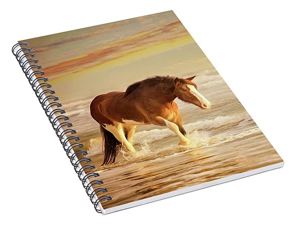 The Break Of Dawn Spiral Notebook