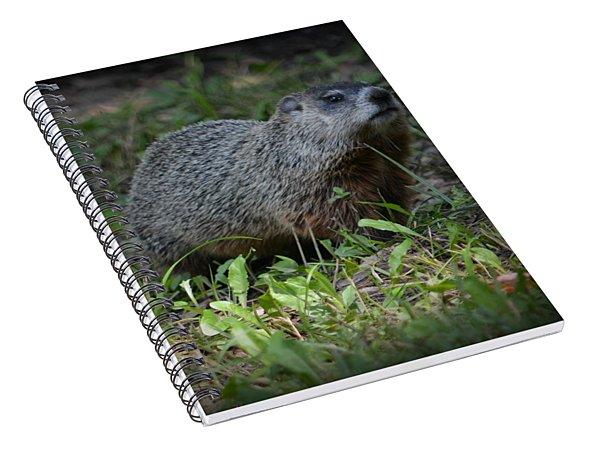 The Digger Spiral Notebook