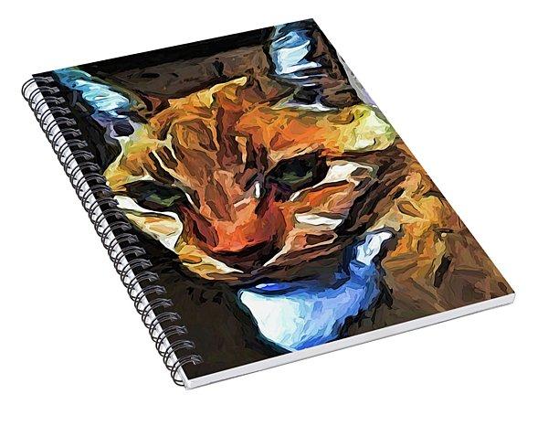 The Gaze Of The Gold Cat Spiral Notebook