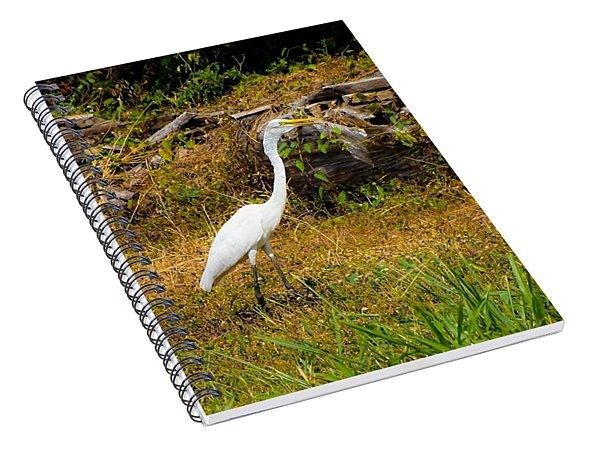 Egret Against Driftwood Spiral Notebook