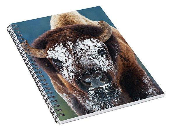The Masked Bison Spiral Notebook