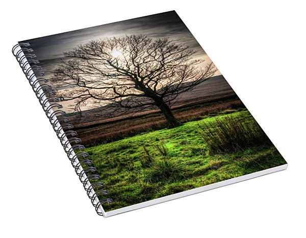 The One Tree Spiral Notebook