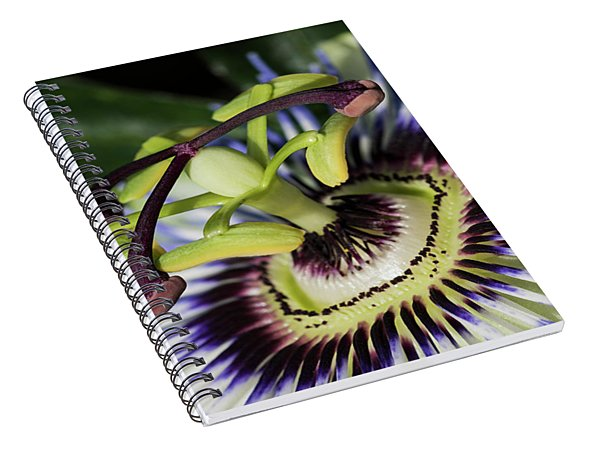 The Passion Spiral Notebook