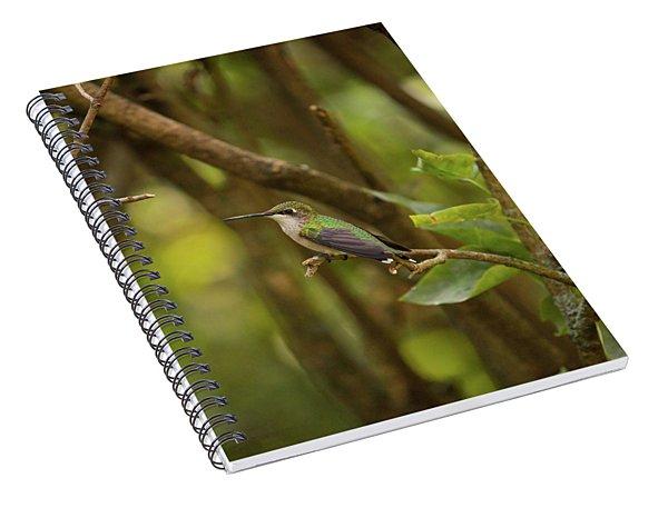 At Rest Spiral Notebook
