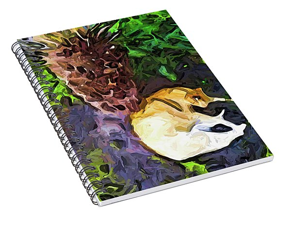 The Sleeping Cat And The Dead Tree Fern Spiral Notebook