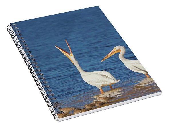 Spiral Notebook featuring the photograph The Stretch by Kim Hojnacki